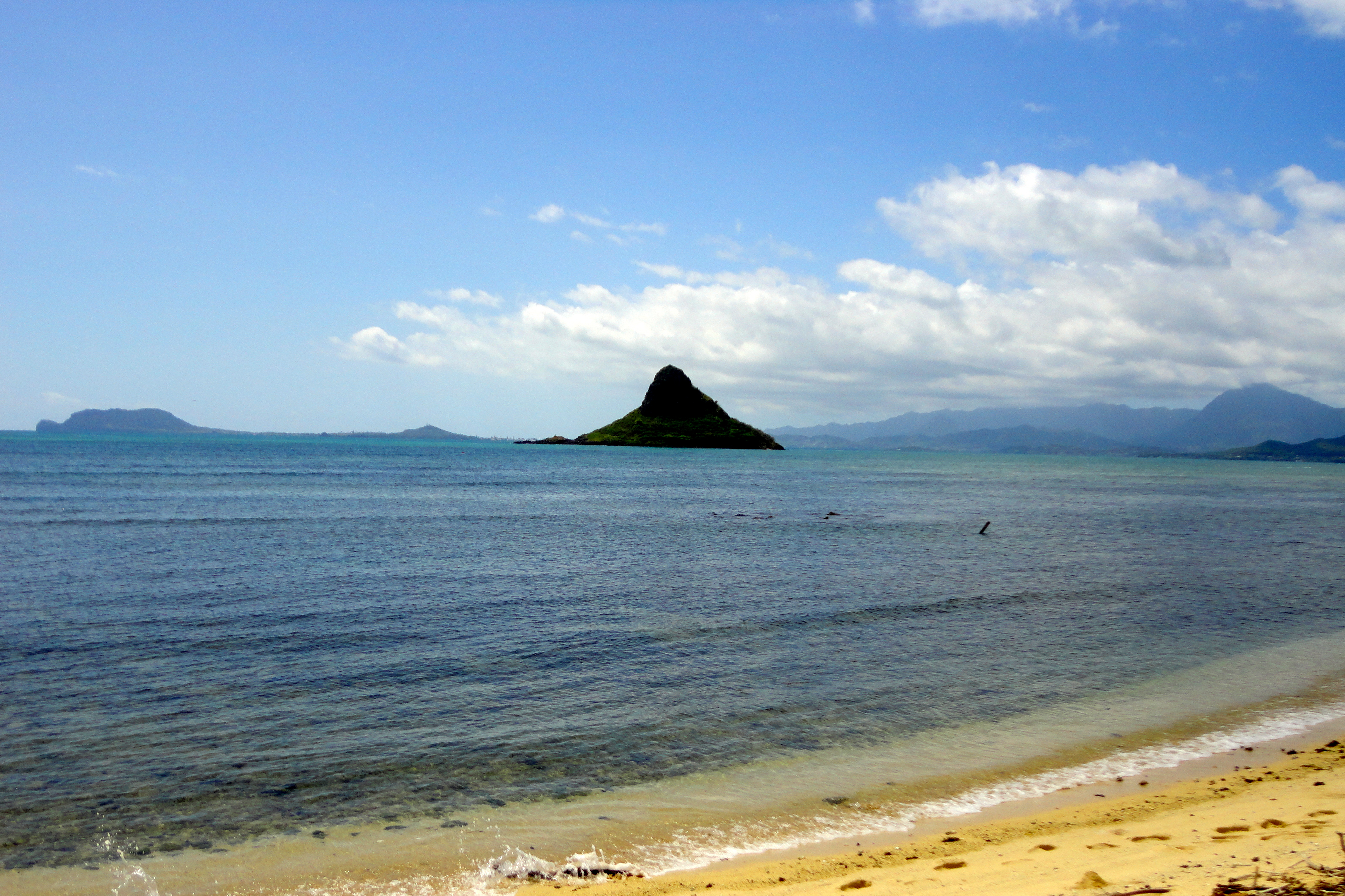 Oahu Spot Tours Scenic View 2