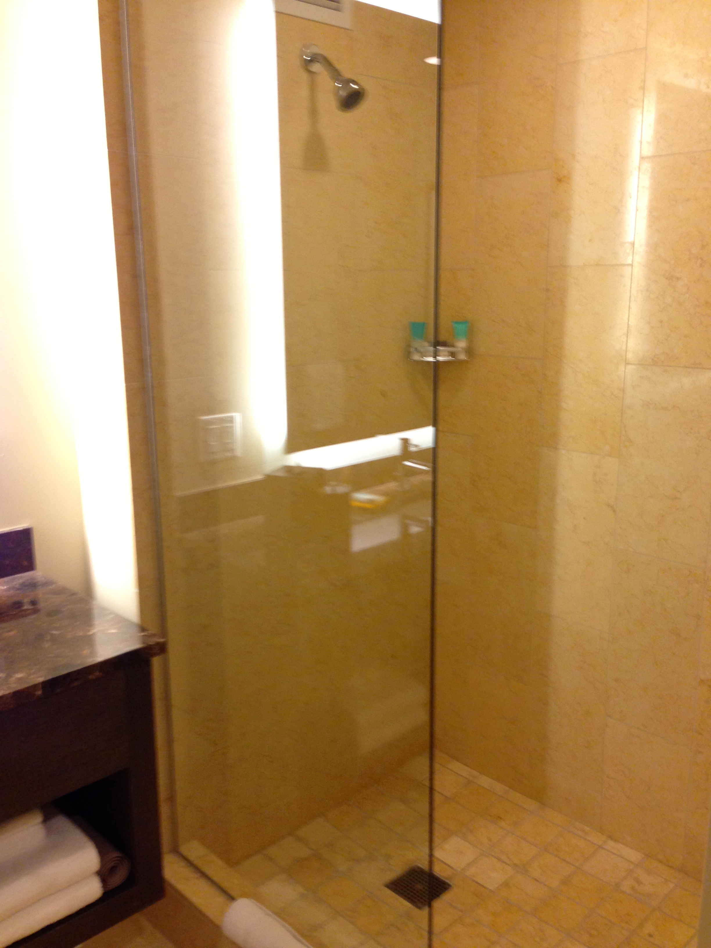 Hyatt at Olive 8 Deluxe King Room Shower